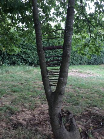 Andy Goldsworthy (1)