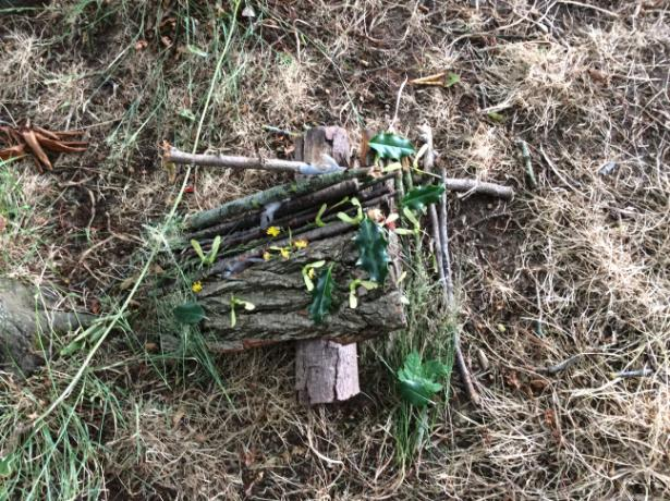 Andy Goldsworthy (10)
