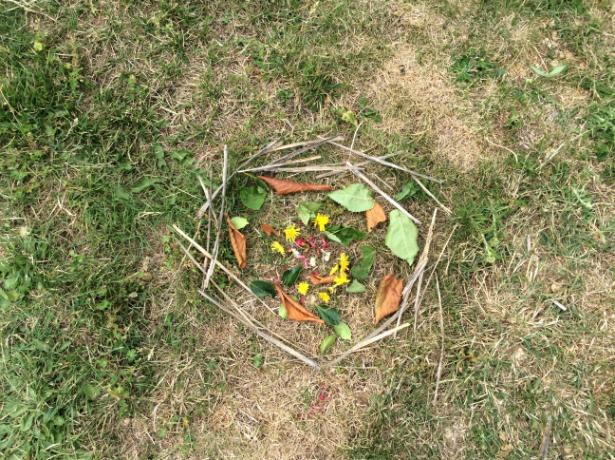 Andy Goldsworthy (19)